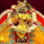 Radha Raman ji