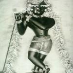 Radha Raman ji_