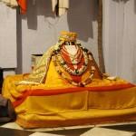 Radharamanvrindavan270-v