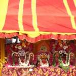 Ooty Jagannath Rathayatra 2016 -1