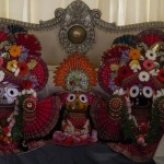 Ooty Jagannath Rathayatra 2016 - 8