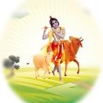 Krishna Vindavan