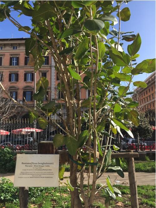 ISKCON Rome 50 Anniversary2