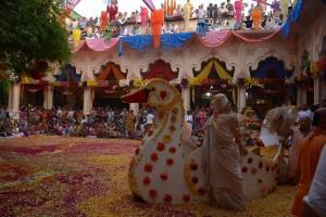 Boat Festival in Vrindavan-2016 (14)