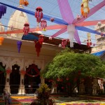 Boat Festival in Vrindavan-2016 (8)