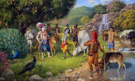 भगवान कृष्ण और भगवान विष्णु में क्या अंतर है ?