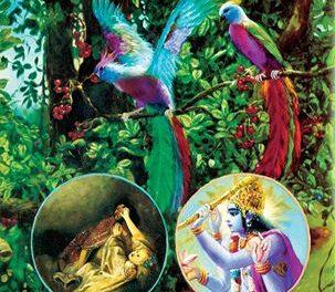 आत्मा तथा परमात्मा – दो मित्र पक्षी